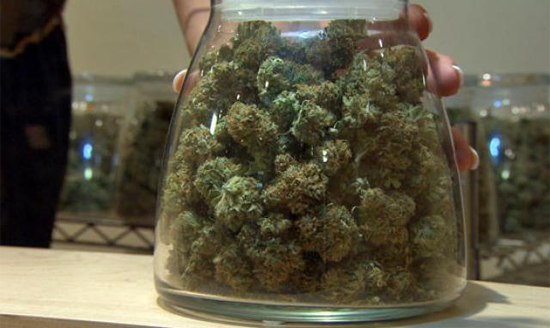 Pot Is Making Colorado So Much Money They Literally Have To Give Some Back To Residents