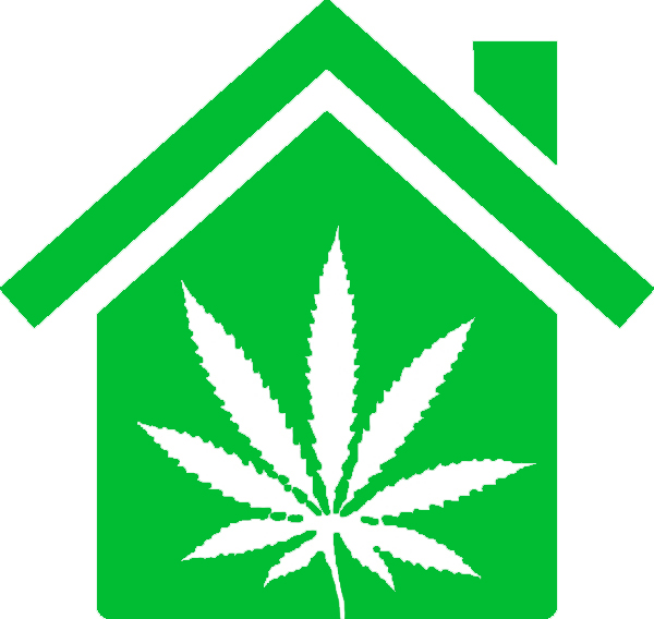 Weed Rentals products, deals and reviews