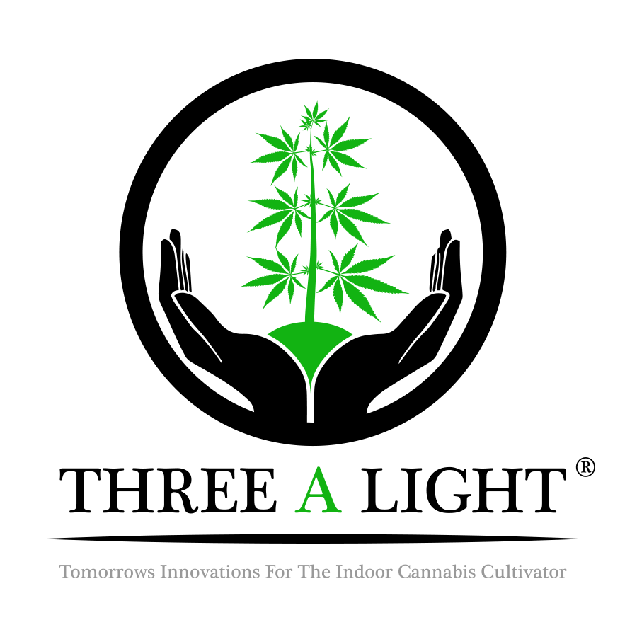 Three A Light products, deals and reviews