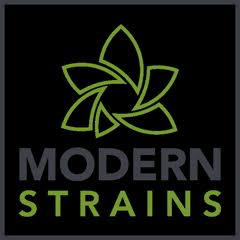 Modern Strains Photography