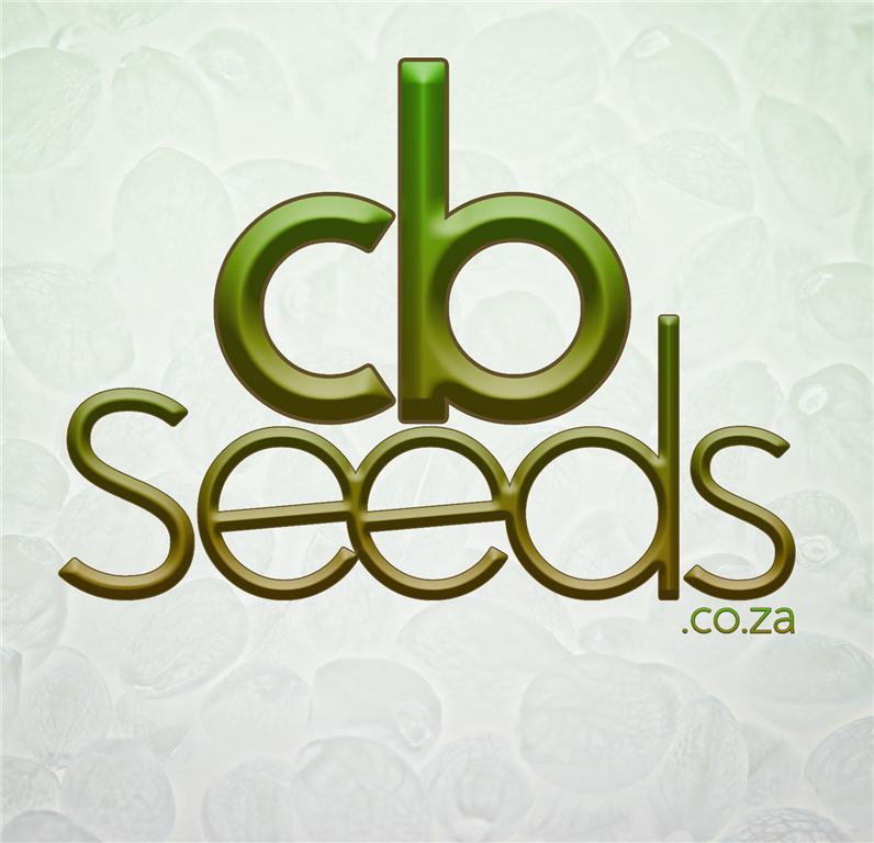 CBank Seeds South Africa