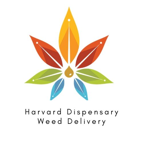 Harvard Dispensary Weed Delivery