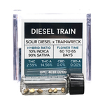 Diesel Train