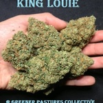 King Louie