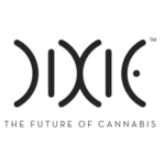 Dixie Tincture 100mg